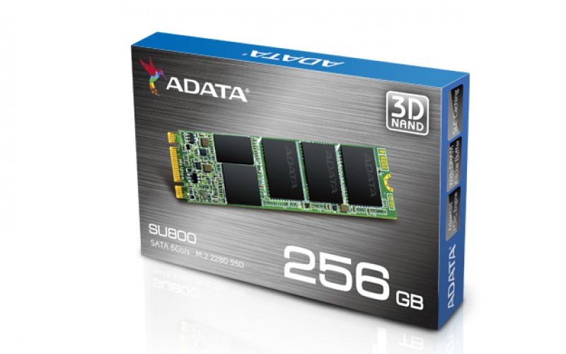 ADATA SSD 256 GB M.2 (SU800)