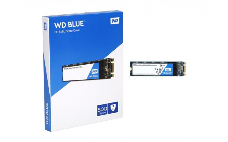 WD SSD 500 GB M.2 (BLUE)