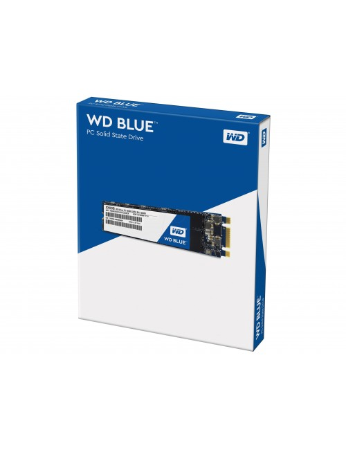 WD SSD 250 GB M.2 (BLUE)