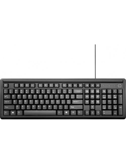 HP KEYBOARD USB 100