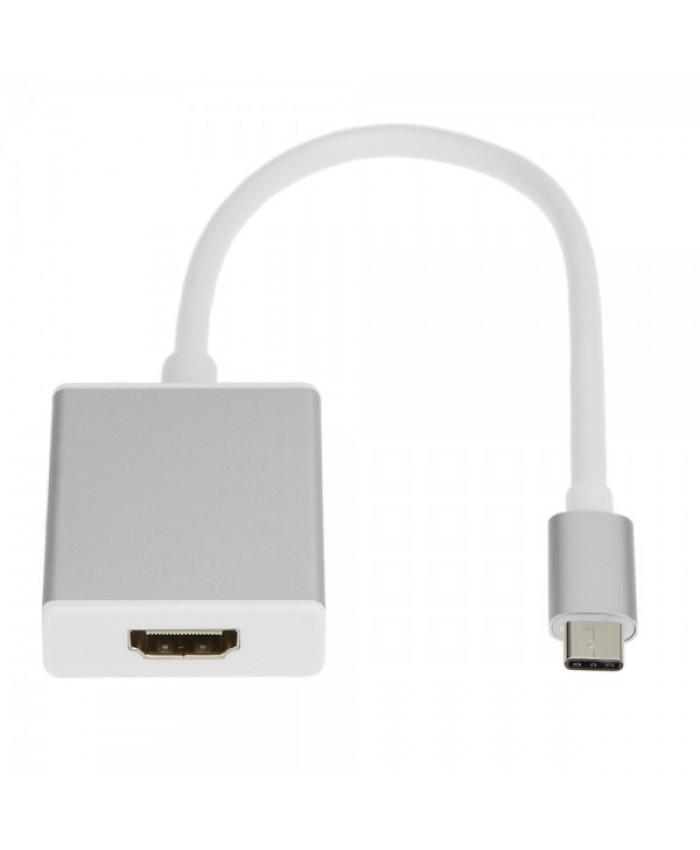 RANZ C TYPE TO HDMI  (MALE TO FEMALE) CONVERTER